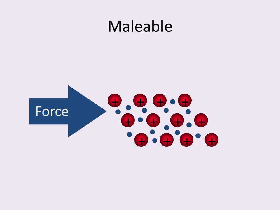 Maleable + Force
