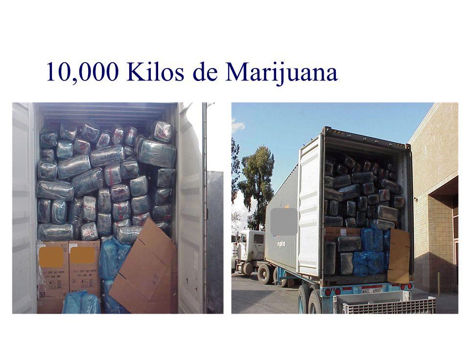 10,000 Kilos de Marijuana