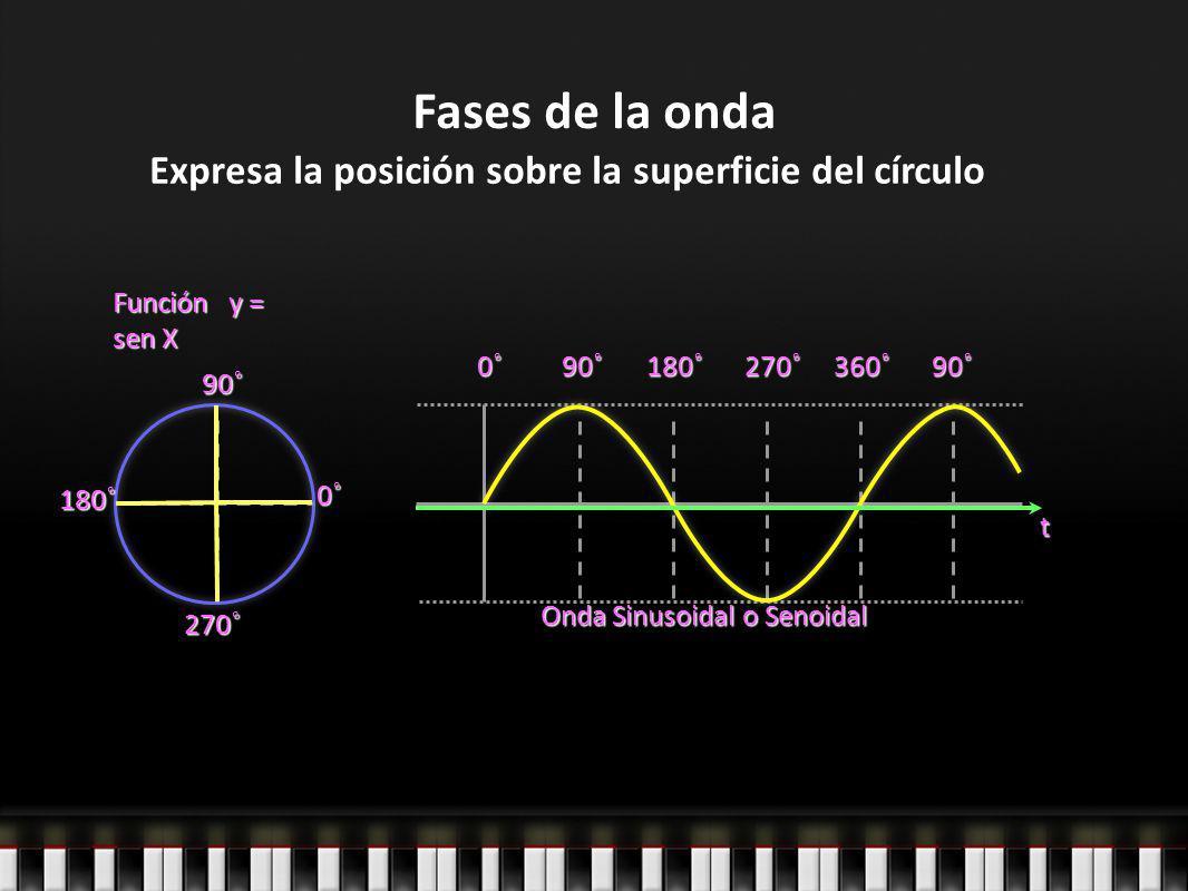 Expresa la posición sobre la superficie del círculo