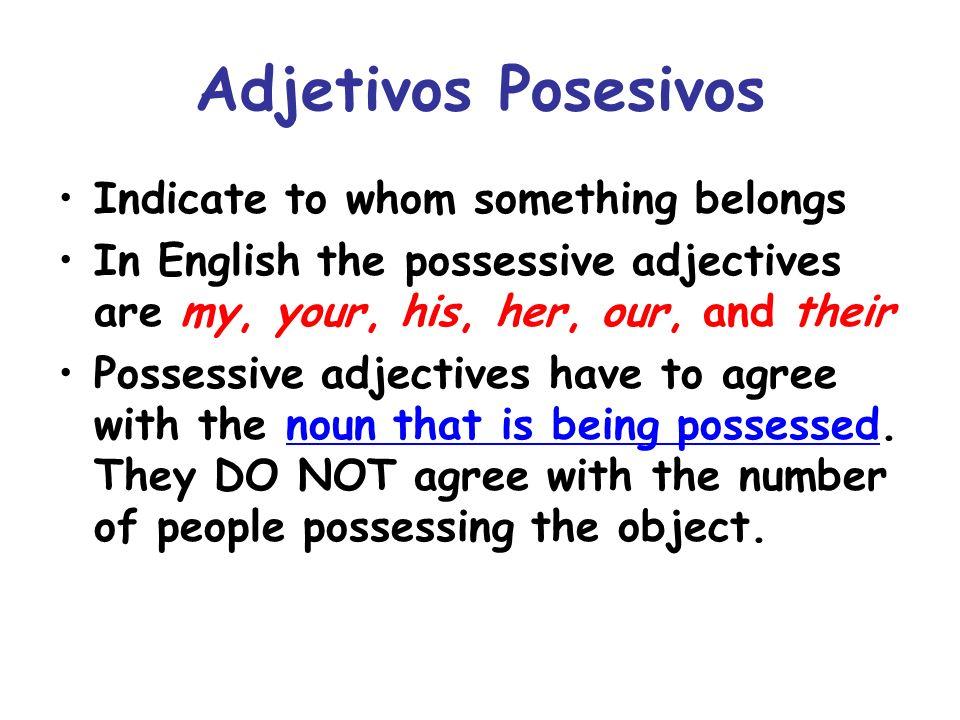Adjetivos Posesivos Indicate to whom something belongs
