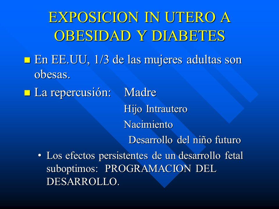 EXPOSICION IN UTERO A OBESIDAD Y DIABETES