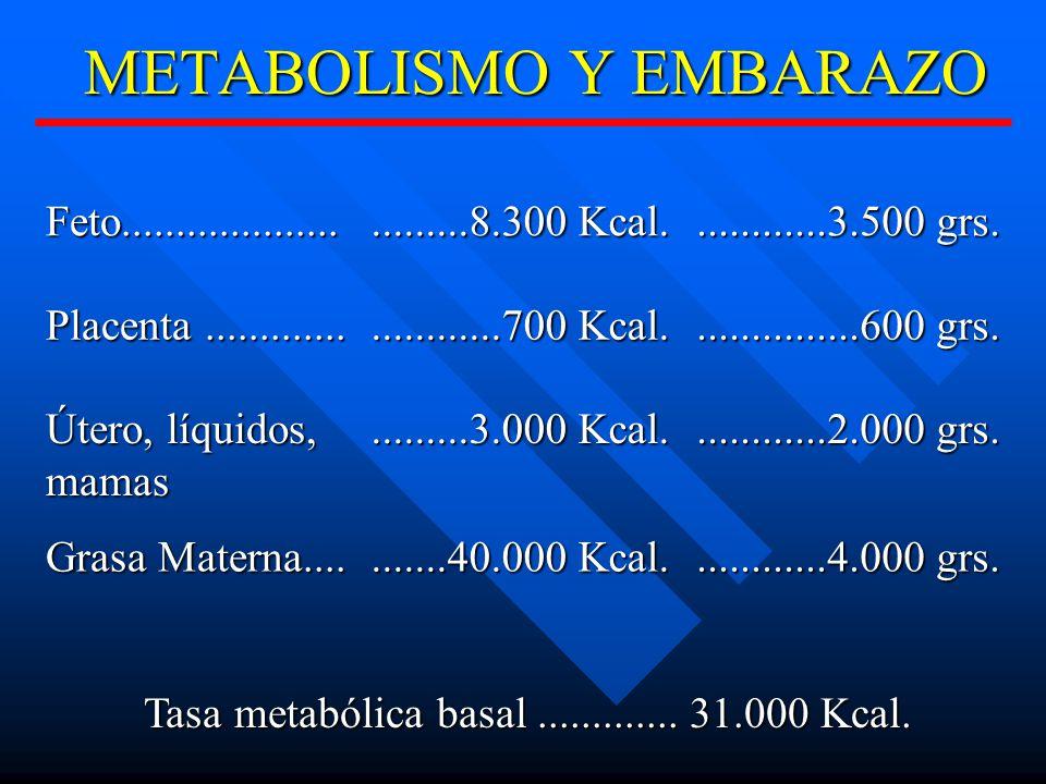 METABOLISMO Y EMBARAZO