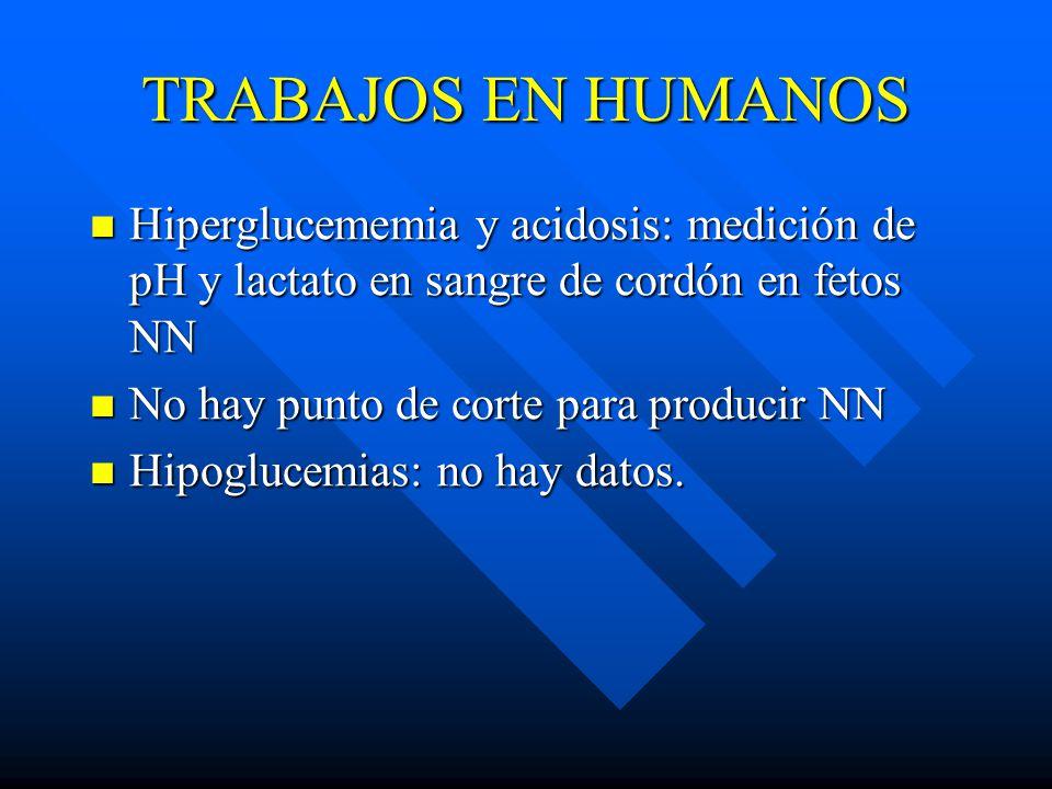TRABAJOS EN HUMANOS Hiperglucememia y acidosis: medición de pH y lactato en sangre de cordón en fetos NN.