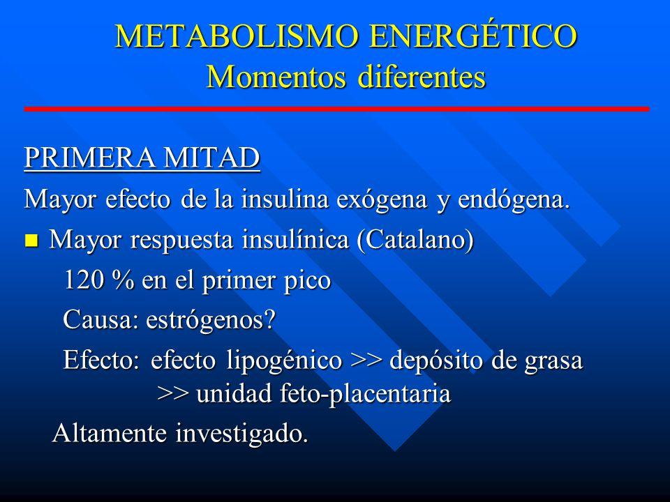METABOLISMO ENERGÉTICO Momentos diferentes