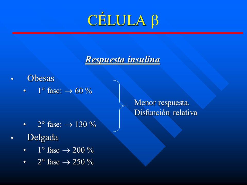 CÉLULA b Respuesta insulina Obesas Delgada 1° fase: ® 60 %