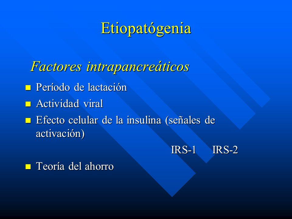 Factores intrapancreáticos