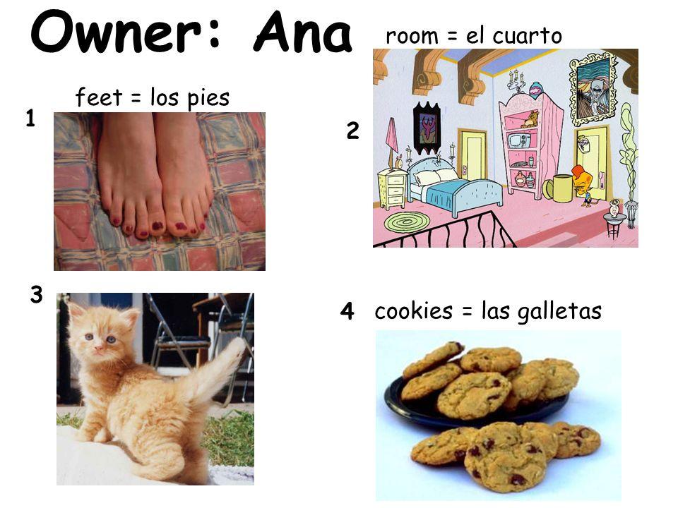 Owner: Ana room = el cuarto feet = los pies 1 2 3 4