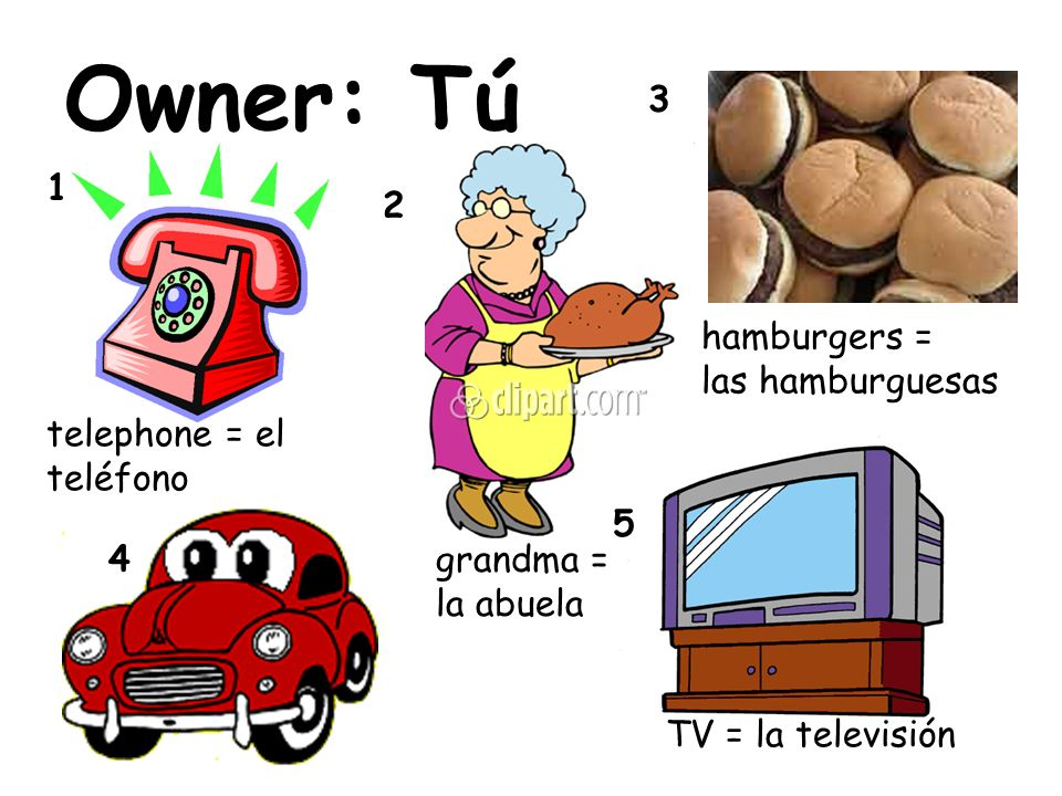 Owner: Tú 3 1 2 hamburgers = las hamburguesas telephone = el teléfono