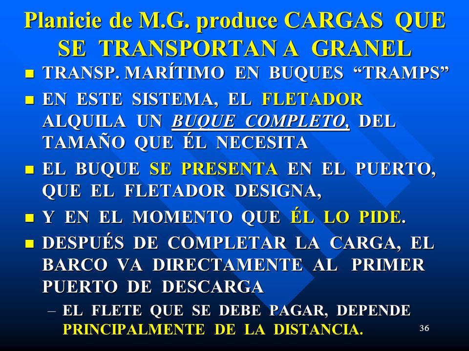 Planicie de M.G. produce CARGAS QUE SE TRANSPORTAN A GRANEL