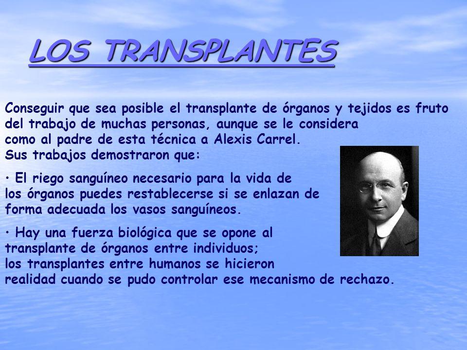 LOS TRANSPLANTES