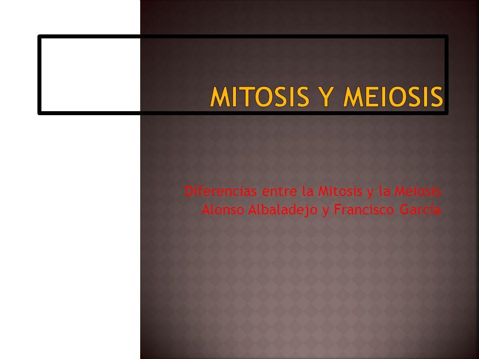 Mitosis y Meiosis Diferencias entre la Mitosis y la Meiosis