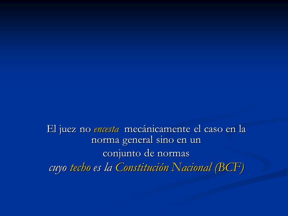 cuyo techo es la Constitución Nacional (BCF)