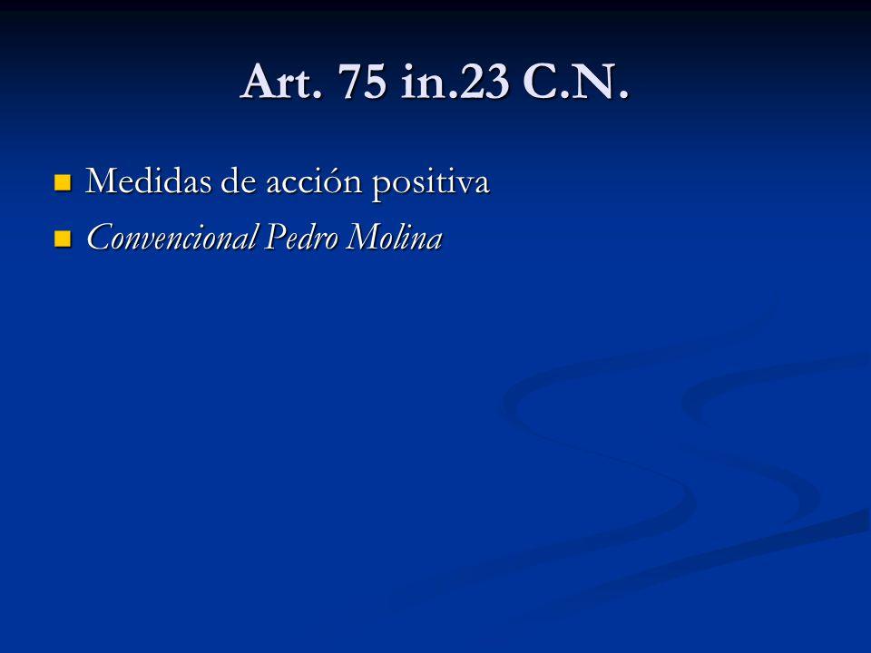 Art. 75 in.23 C.N. Medidas de acción positiva