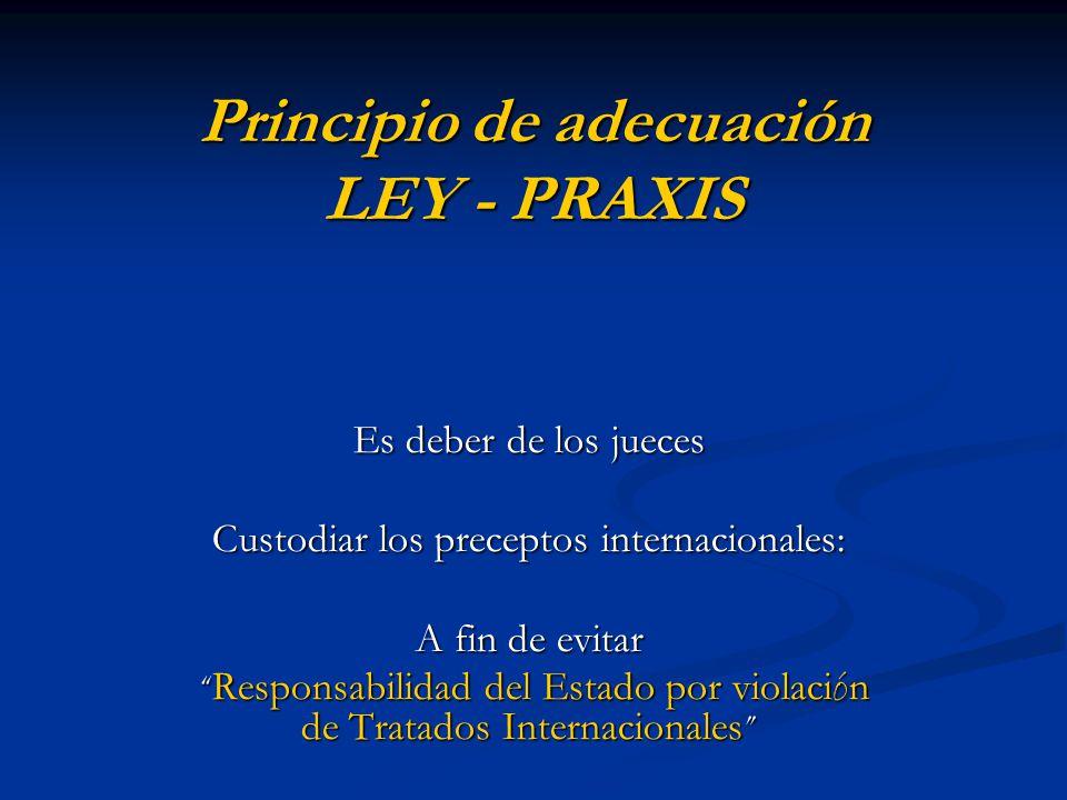 Principio de adecuación LEY - PRAXIS