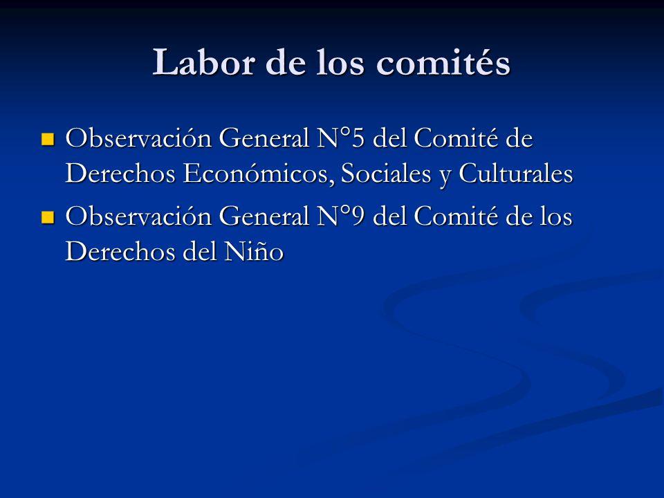 Labor de los comités Observación General N°5 del Comité de Derechos Económicos, Sociales y Culturales.