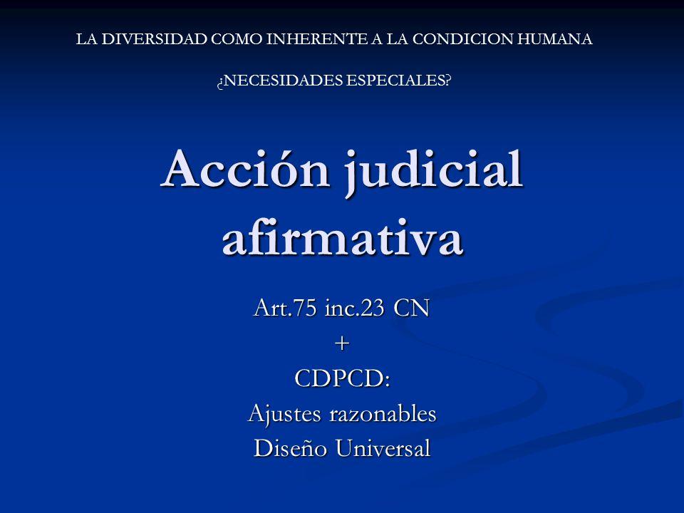 Acción judicial afirmativa