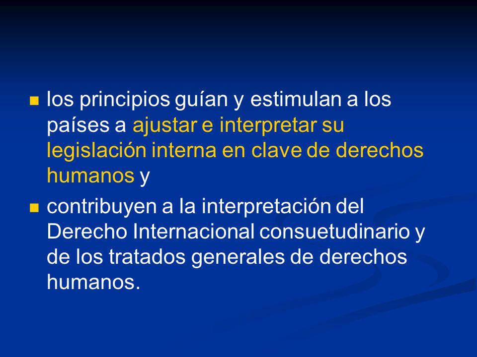 los principios guían y estimulan a los países a ajustar e interpretar su legislación interna en clave de derechos humanos y