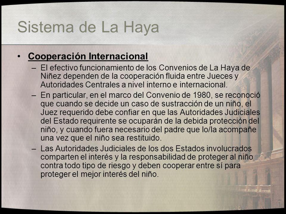 Sistema de La Haya Cooperación Internacional