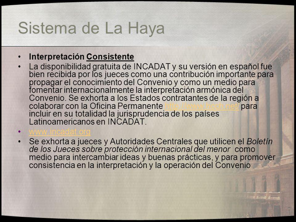 Sistema de La Haya Interpretación Consistente
