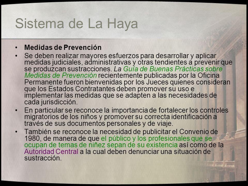 Sistema de La Haya Medidas de Prevención