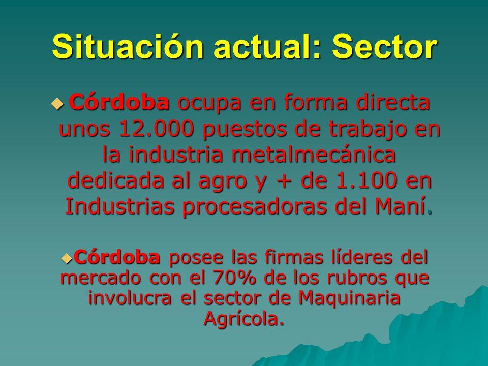 Situación actual: Sector