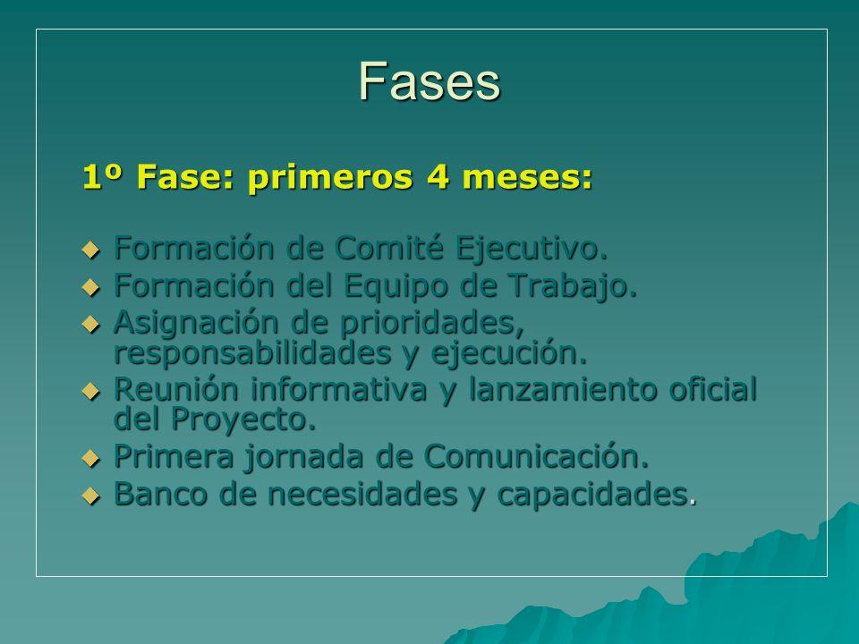 Fases 1º Fase: primeros 4 meses: Formación de Comité Ejecutivo.