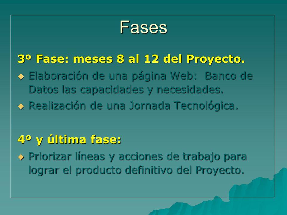Fases 3º Fase: meses 8 al 12 del Proyecto. 4º y última fase: