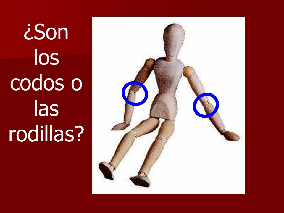 ¿Son los codos o las rodillas