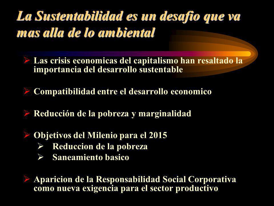 La Sustentabilidad es un desafio que va mas alla de lo ambiental