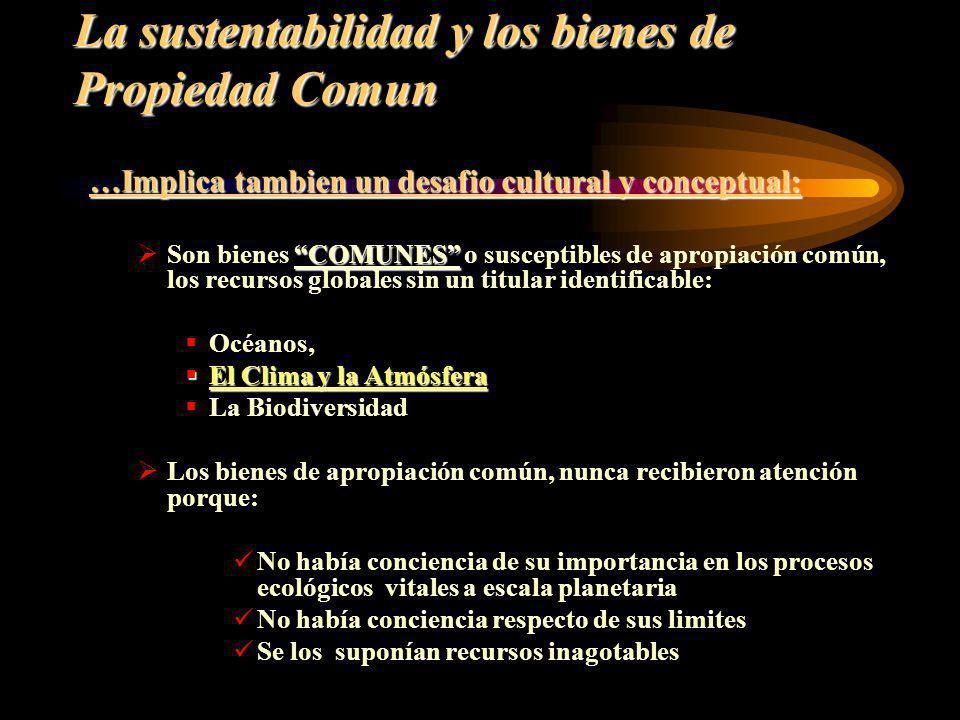 La sustentabilidad y los bienes de Propiedad Comun