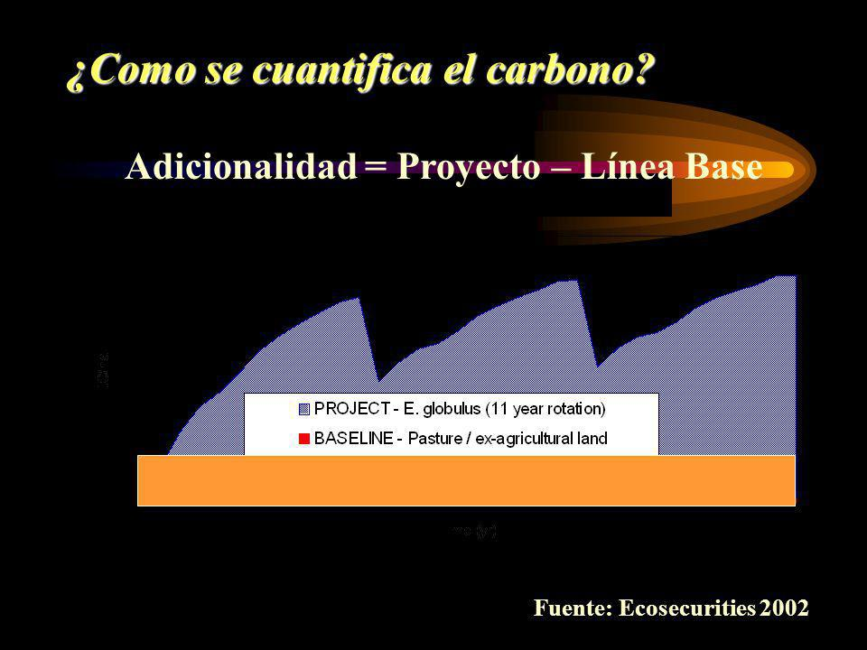 Fuente: Ecosecurities 2002