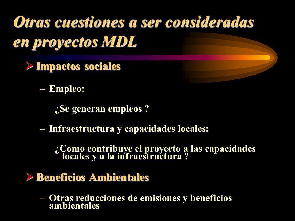 Otras cuestiones a ser consideradas en proyectos MDL