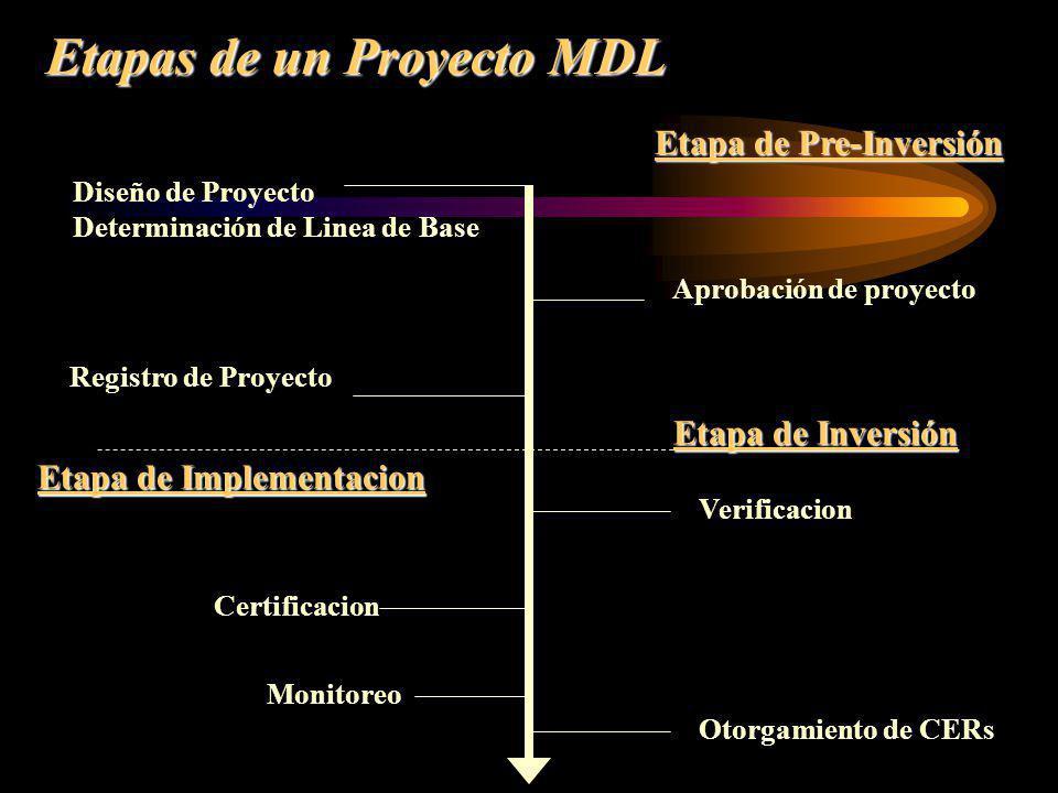 Etapas de un Proyecto MDL