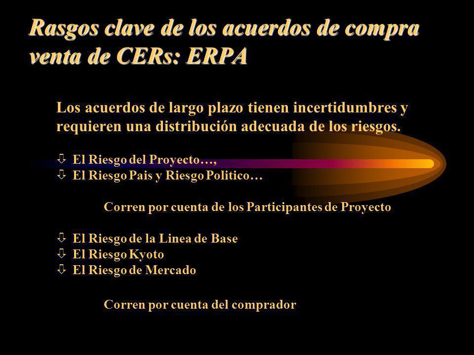 Rasgos clave de los acuerdos de compra venta de CERs: ERPA