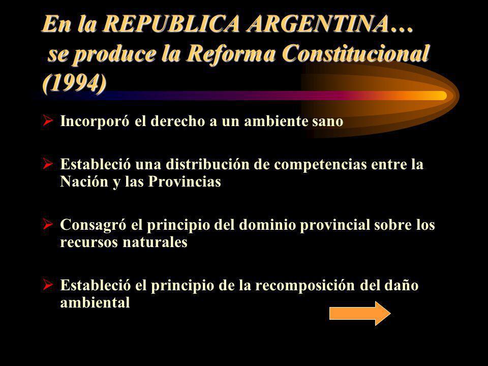 En la REPUBLICA ARGENTINA… se produce la Reforma Constitucional (1994)