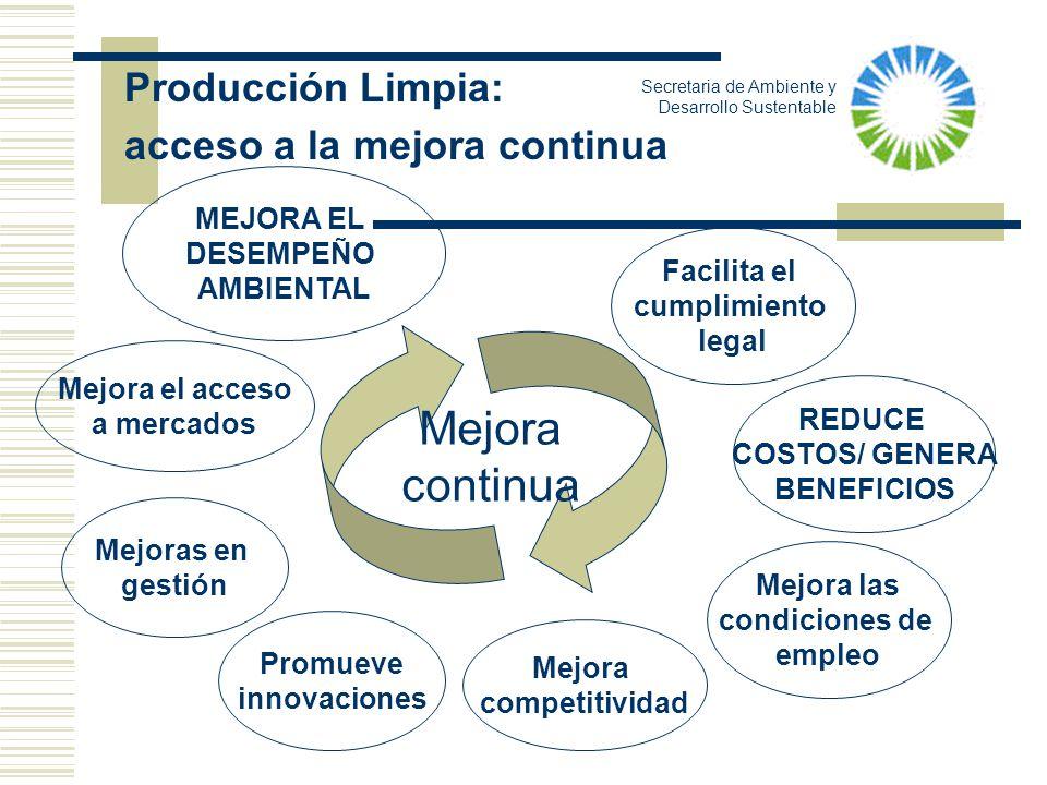 Mejora continua Producción Limpia: acceso a la mejora continua