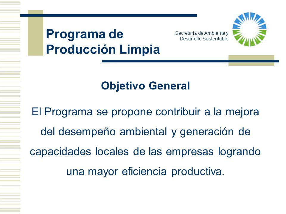 Programa de Producción Limpia Objetivo General