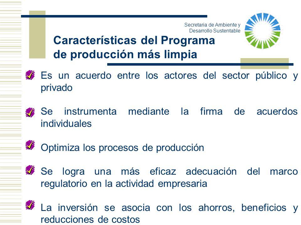 Características del Programa de producción más limpia