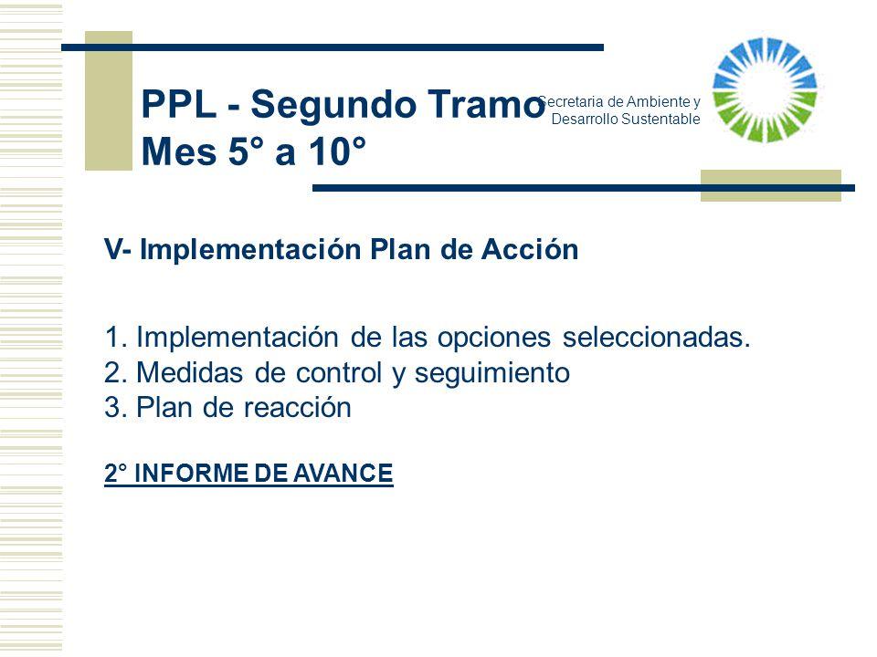 PPL - Segundo Tramo Mes 5° a 10° V- Implementación Plan de Acción