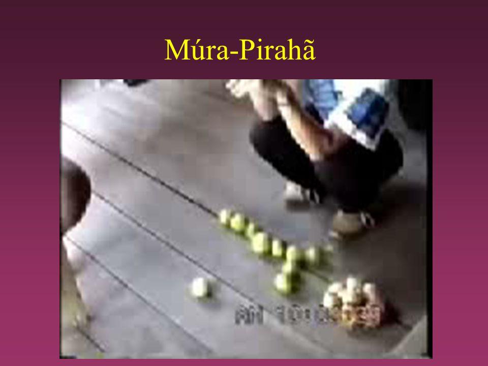 Múra-Pirahã