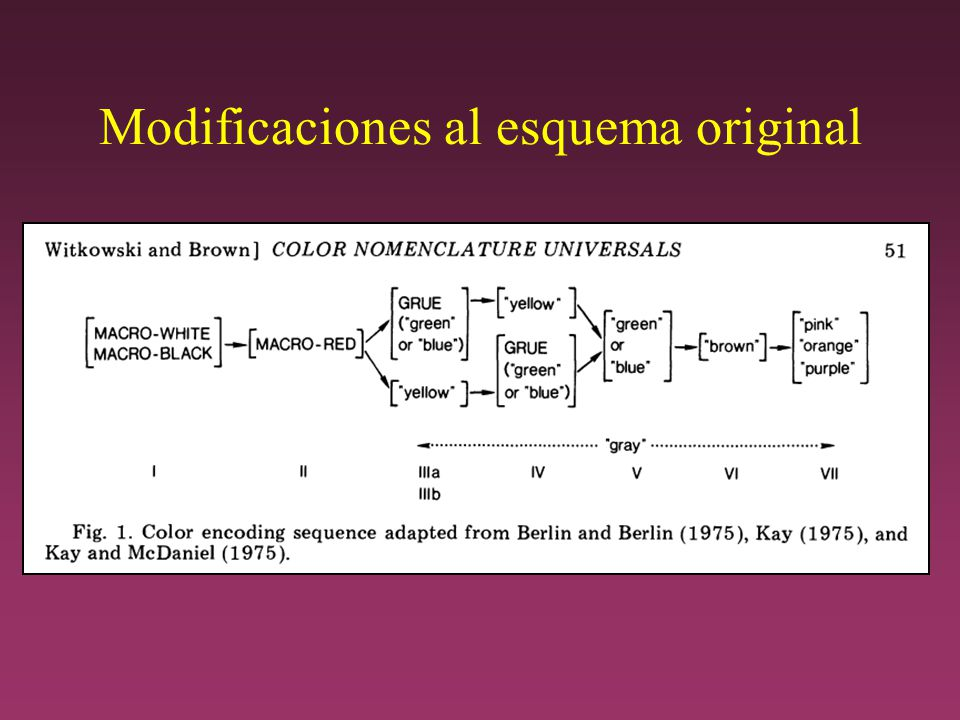 Modificaciones al esquema original