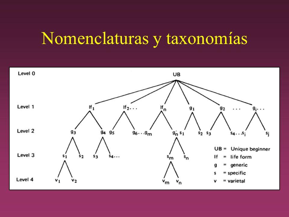 Nomenclaturas y taxonomías