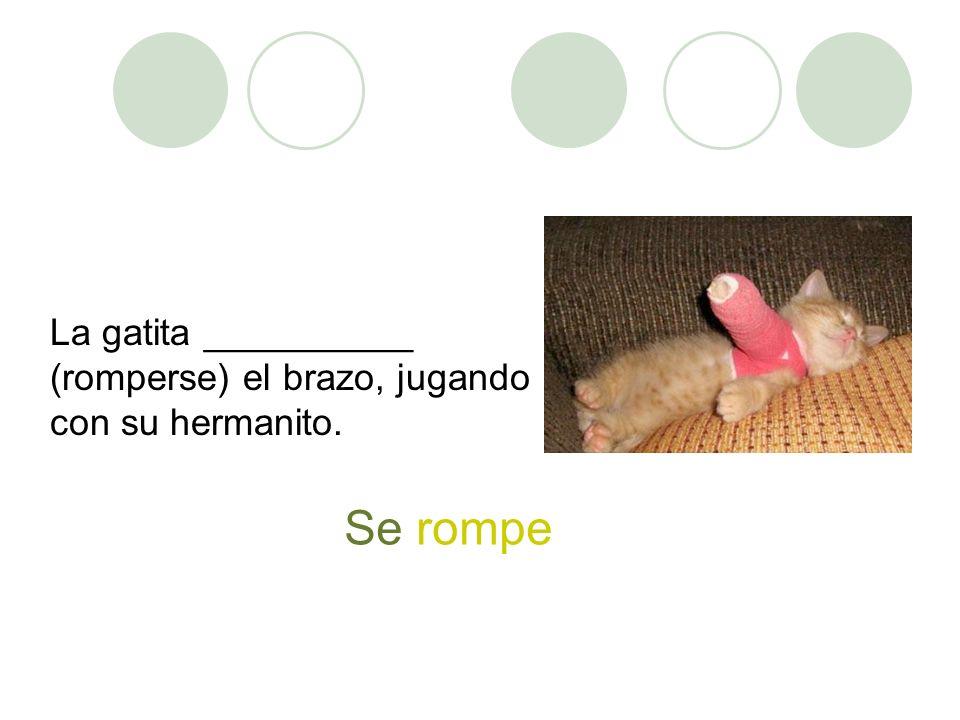 La gatita __________ (romperse) el brazo, jugando con su hermanito.