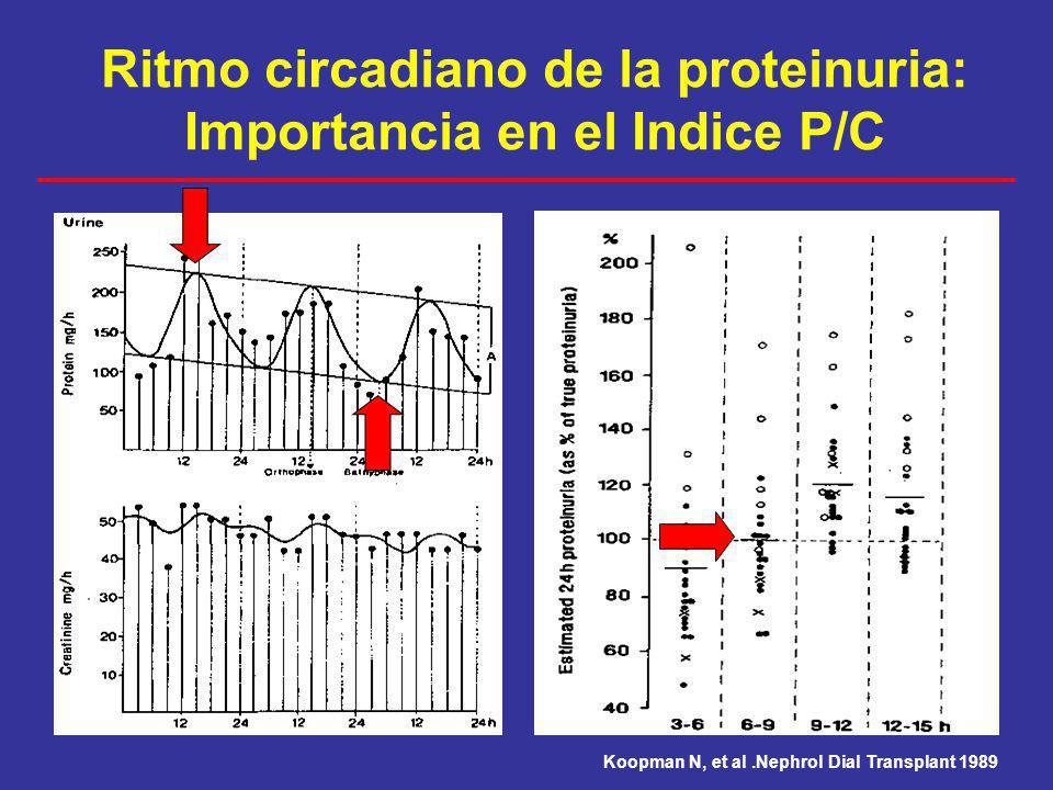Ritmo circadiano de la proteinuria: Importancia en el Indice P/C