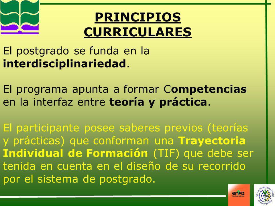 PRINCIPIOS CURRICULARES