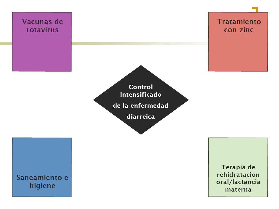 Control Intensificado Terapia de rehidratacion oral/lactancia materna