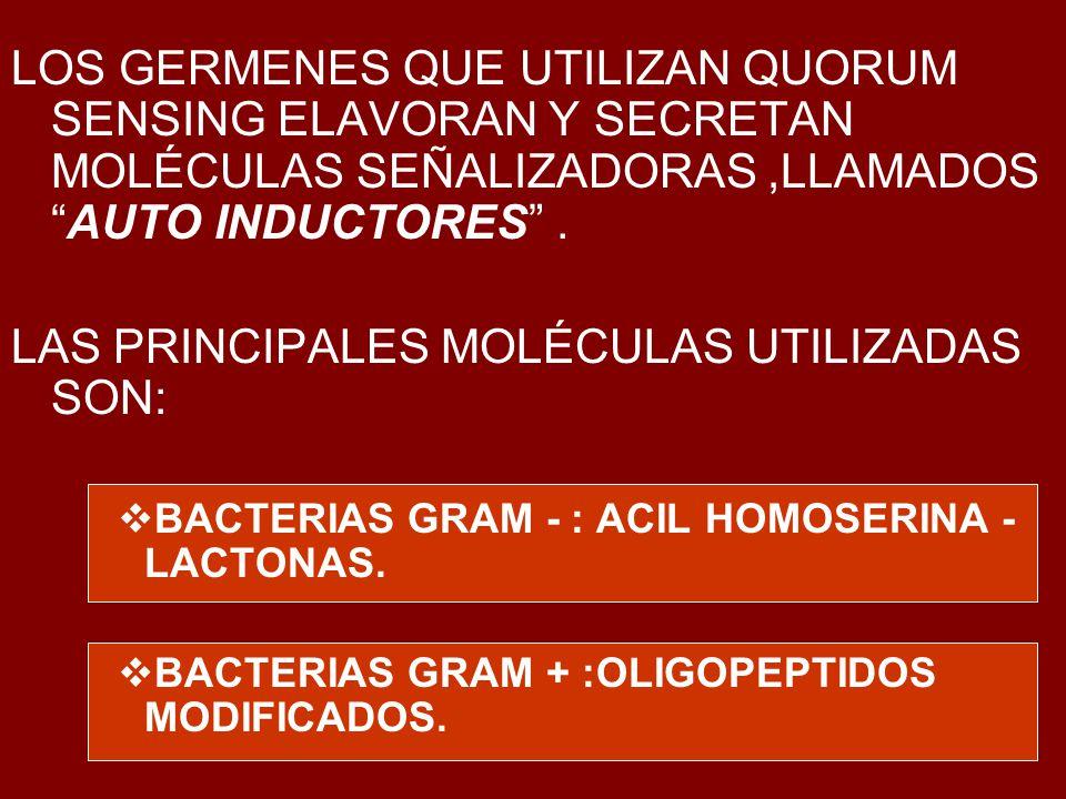 LAS PRINCIPALES MOLÉCULAS UTILIZADAS SON: