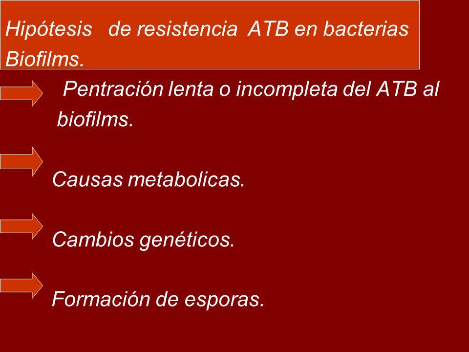 Hipótesis de resistencia ATB en bacterias