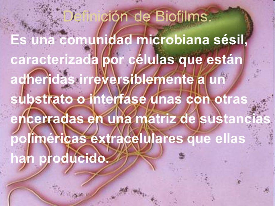 Definición de Biofilms.