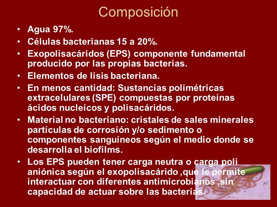 Composición Agua 97%. Células bacterianas 15 a 20%.